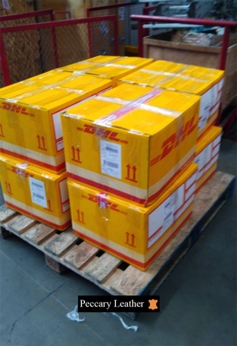 Peccary Leather Packaged For Shipment After SERFOR Inspection